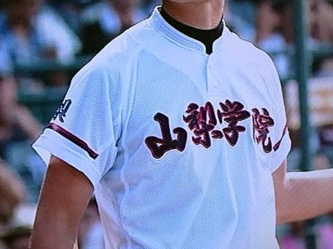 2016sum_yamanashi